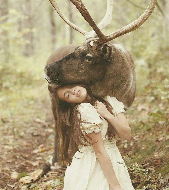 home lifestyle effekt unglaubliche fotos echten tieren